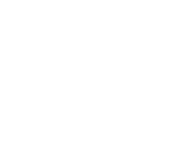 Playful City USA White Text Logo